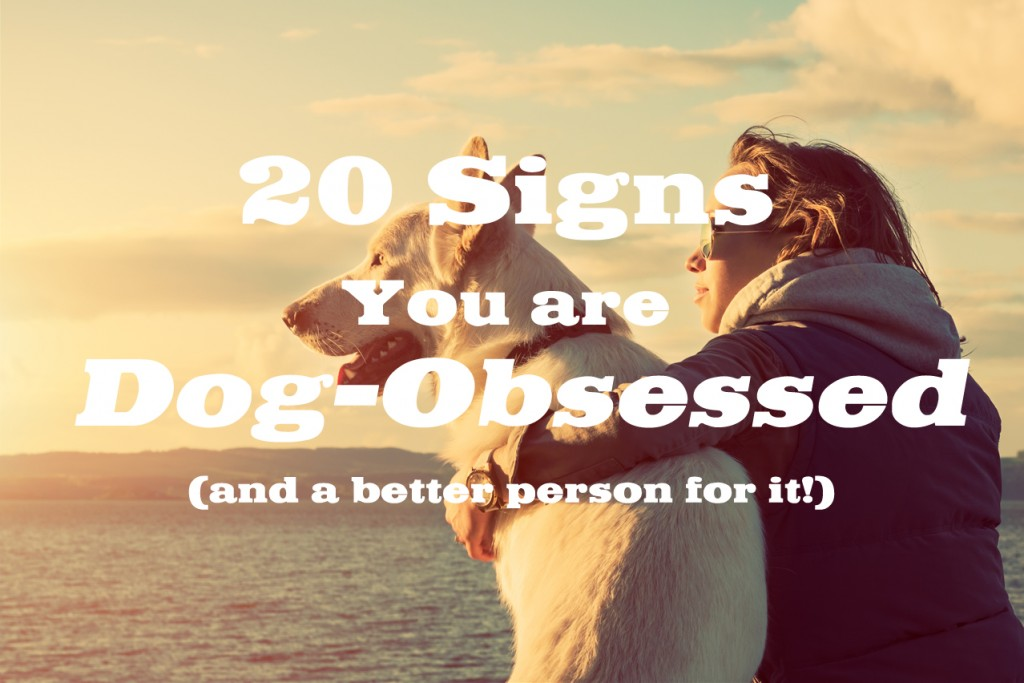 20 Signs your are dog obsessed