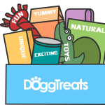Dog-Treats-Subscription-Box