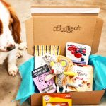 Dog Treat Subscription Box - April 2017